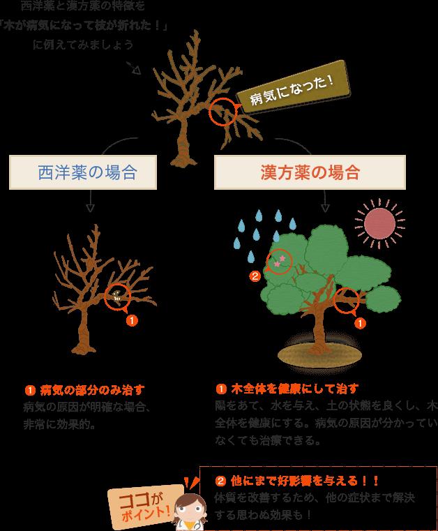 西洋薬と漢方薬の特徴を「気が病気になって枝が折れた!」に例えた図